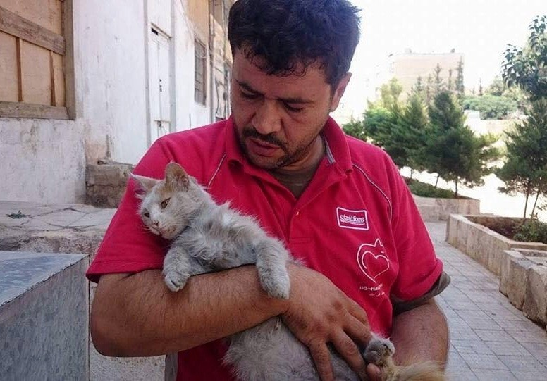 aleppo-cat-man-01