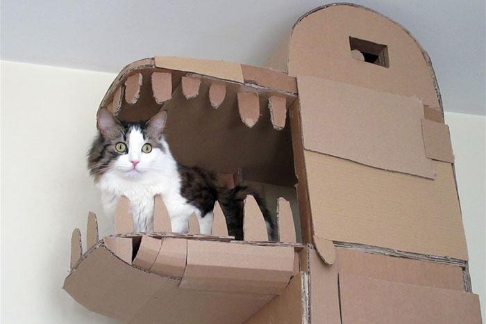 cardboard-ark-structure-cat-1