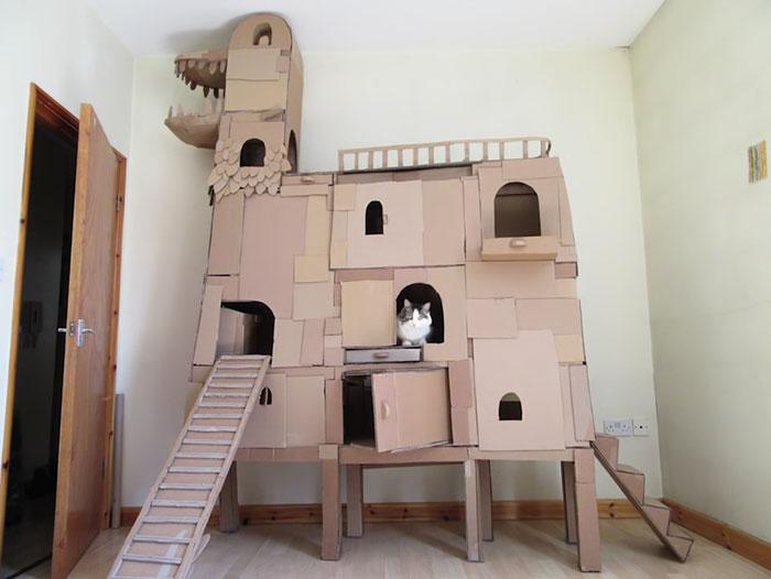 cardboard-ark-structure-cat-5