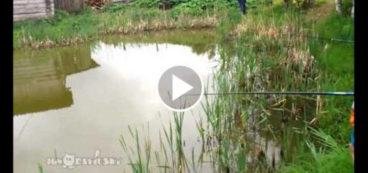 Featured-Ambush-Fishing-FB