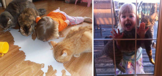 Featured-Leave-Cat-With-Kids-FB