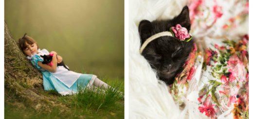 kitty-newborn-pics-feature