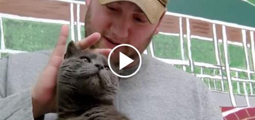 Featured-1700-Miles-Lost-Cat-FB
