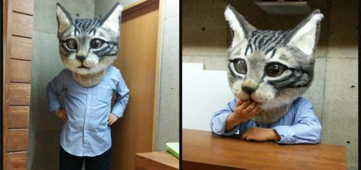 cat-head-feature