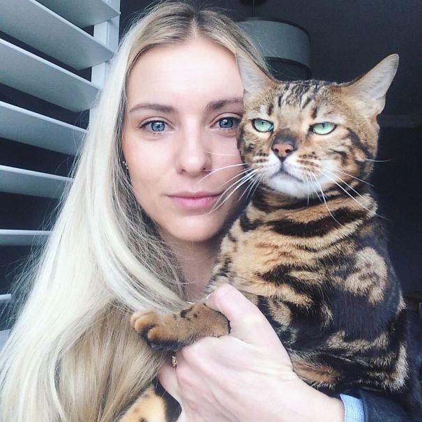 cats-dont-like-selfies-2