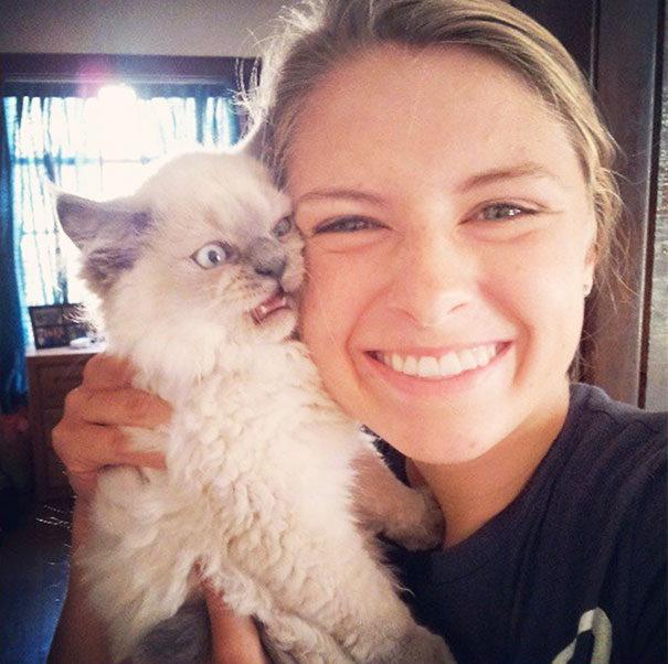 cats-dont-like-selfies-3